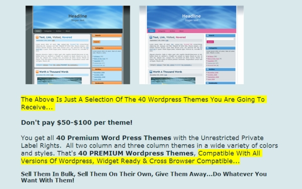 Product picture 40 Wordpress Thems *Unrestrected PLR*